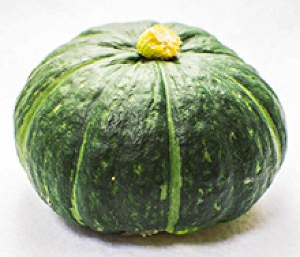 画像1: みやこかぼちゃ 5kg(露地トンネル栽培) (1)